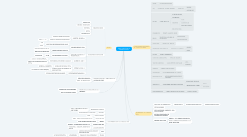 Mind Map: MAPA CONCEPTUAL DE CÁMARAS DE VÍDEO