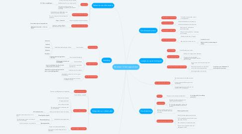 Mind Map: Structuur in het rapporteren