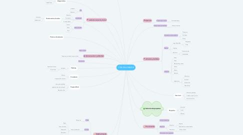 Mind Map: VIDA SALUDABLE