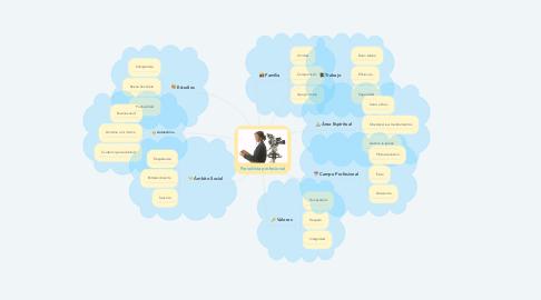 Mind Map: Periodista profesional