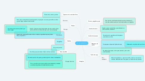 Mind Map: LOS CONDIMENTOS