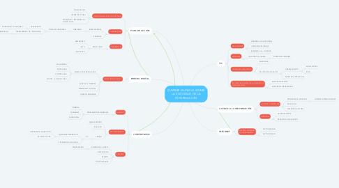 Mind Map: CUMBRE MUNDIAL SOBRE LA SOCIEDAD DE LA INFORMACIÓN