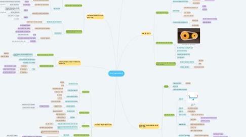 Mind Map: MECHANISMS