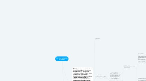 Mind Map: SISTEMA NERVIOSO HUMANO