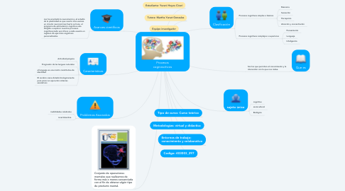 Mind Map: Procesos cognoscitivos
