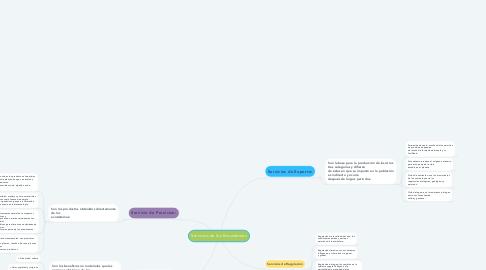 Mind Map: Servicios de los Ecosistemas