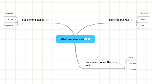 Mind Map: What are Mammals