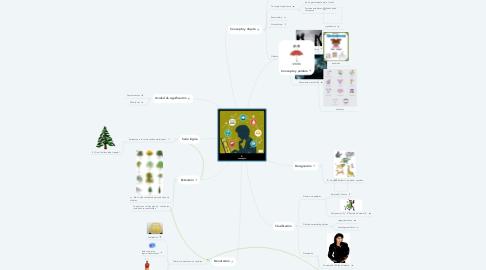 Mind Map: El concepto