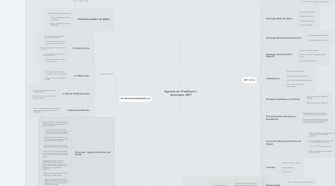 Mind Map: Seguimiento Planificacion  Estratégica MSP