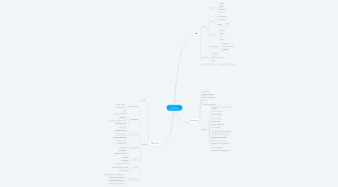 Mind Map: Eindproject