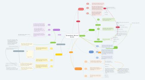 Mind Map: Sympathetic Nervous System