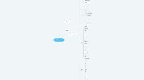 Mind Map: Сайт Максимова
