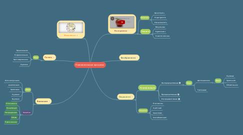 Mind Map: Познавательные процессы