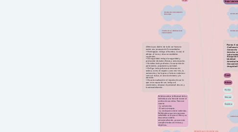 Mind Map: PRINCIPALES TEORÍAS DEL DESARROLLO   PRINCIPALES AUTORES Y EXPONENTES