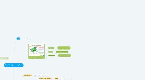 Mind Map: Relación agua-suelo-planta