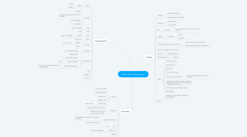 Mind Map: Pôle Talent Management