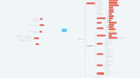 Mind Map: ProSkin