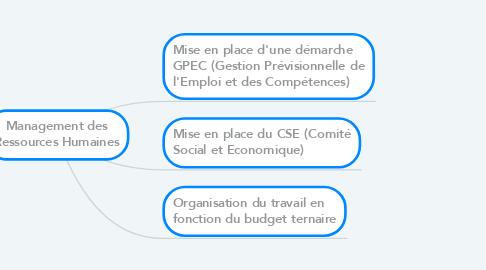 Mind Map: Management des Ressources Humaines