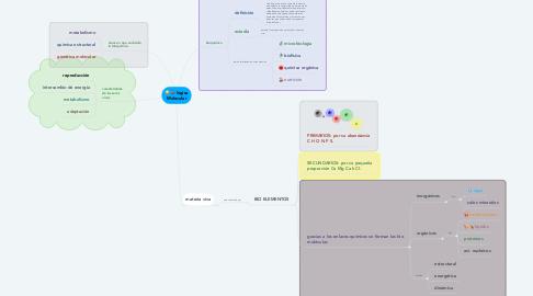 Mind Map: lógica Molecular
