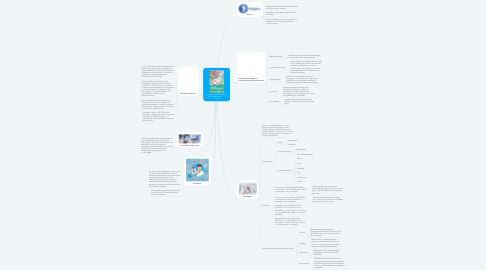 Mind Map: Princípios da administração de medicamentos       Seção 1.2