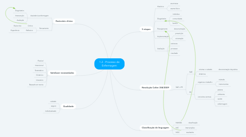 Mind Map: 1.2 - Processo de Enfermagem