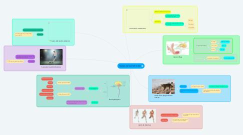 Mind Map: Teorías del control motor
