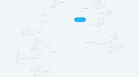 Mind Map: SEMIOLOGÍA DERMATOLÓGICA