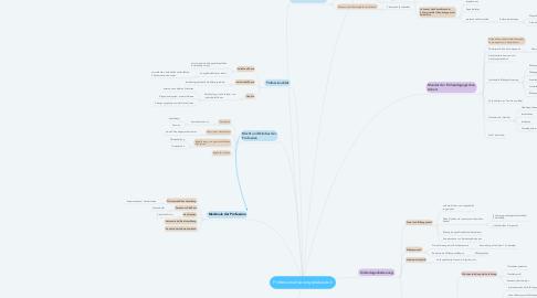 Mind Map: Professionalisierungsdiskussion
