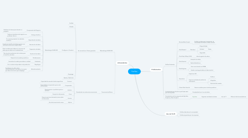 Mind Map: Perfiles
