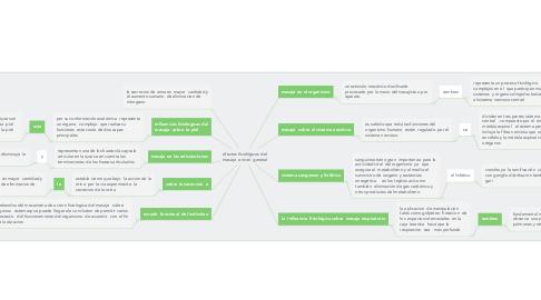 Mind Map: efectos fisiológicos del masaje  a nivel  general