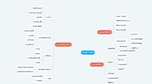Mind Map: ระบบสุขภาพชุมชน