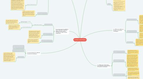 Mind Map: Jumeaux numériques