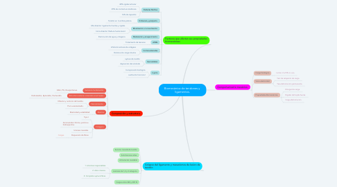 Mind Map: Biomecánica de tendones y  ligamentos.