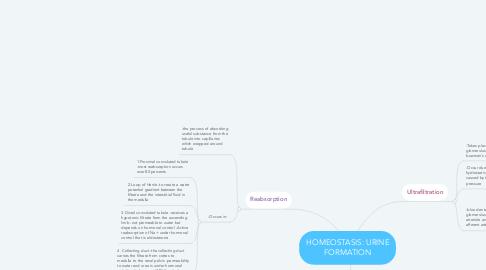Mind Map: HOMEOSTASIS: URINE FORMATION