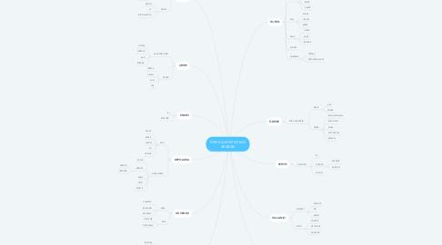 Mind Map: TÜRK KAHVESİ SOKAK  ARABASI
