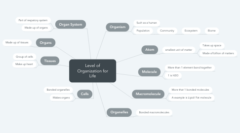 Mind Map: Level of Organization for Life