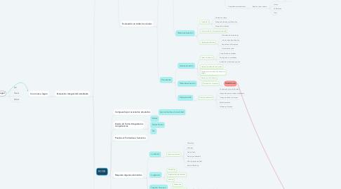 Mind Map: Estrategias Evaluativas en el modelo por competencias