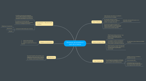 Mind Map: Recreación de la bioética a partir de la historia