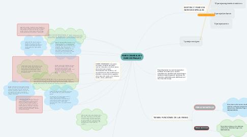 Mind Map: PARES CRANEALES Y PARES ESPINALES