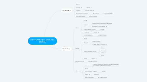 Mind Map: GERENCIAMENTO LEADS NEXT DIGITAL