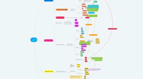 Mind Map: Vanesa Mora