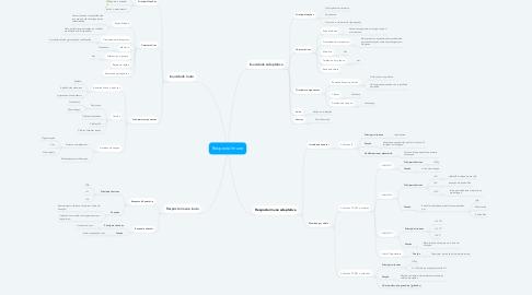 Mind Map: Resposta Imune