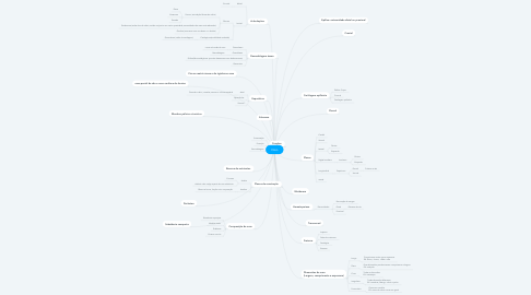 Mind Map: Osso