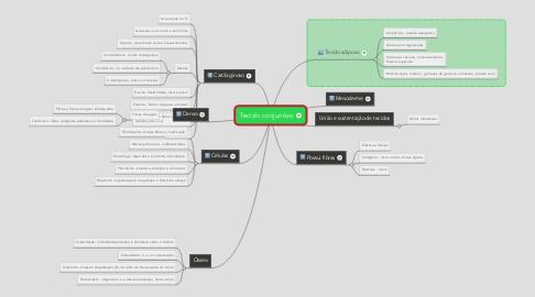 Mind Map: Tecido conjuntivo