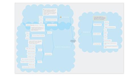 Mind Map: ELEMENTOS DE COMPORTAMIENTO INDIVIDUAL