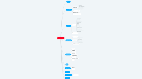 Mind Map: Ficha General