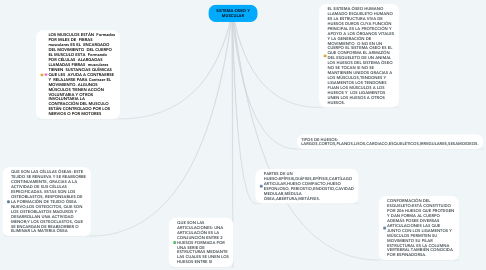 Mind Map: SISTEMA OSEO Y MUSCULAR