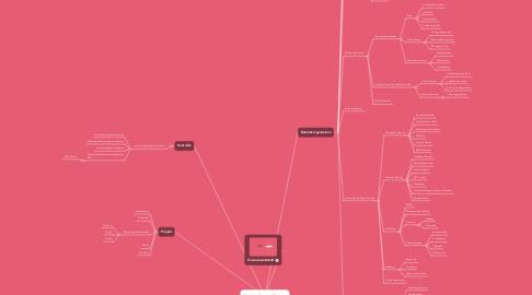 Mind Map: Unternehmensführung
