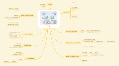 Mind Map: cell injury
