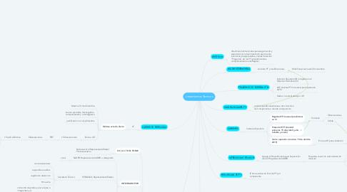 Mind Map: Lineamientos Tecnicos